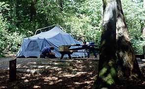 Camano Island State Park camp site