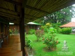 tortuguero-lodge-rooms-standard-06