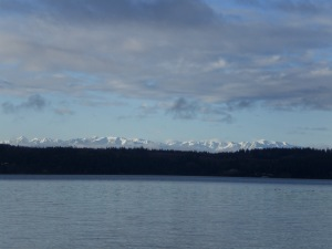 Snow Capped Olympic Mountains